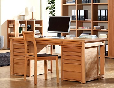 Schreibtisch diderot buche gr ne erde for Schreibtisch yoga