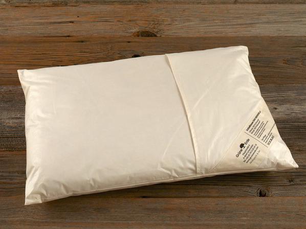 kopfkissen schadstoff gepr fte bio kissen aus naturmaterialien gr ne erde. Black Bedroom Furniture Sets. Home Design Ideas